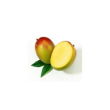 Aromatische Mangoextrakt
