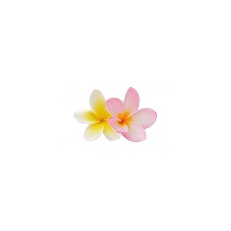 Frangipani - květinová vůně