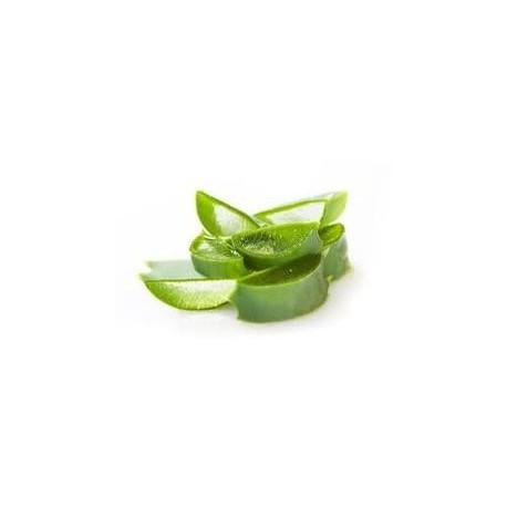 Aloe vera 200:1, 3g č.1428