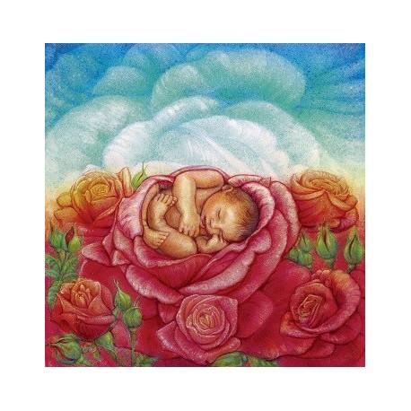 Objetí jemnou Růží
