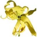 Ylang ylang esenciální olej