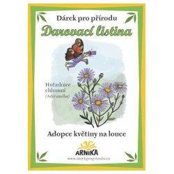 Darovací listina - adopce květiny na louce - Ladoňka dvoulistá