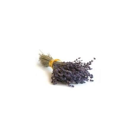 Ambra und Lavendel