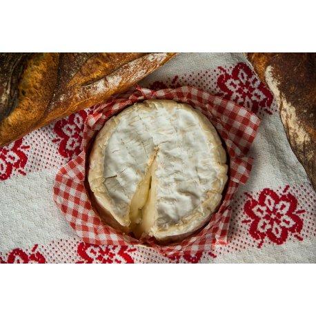 Camembert-Produktionsset