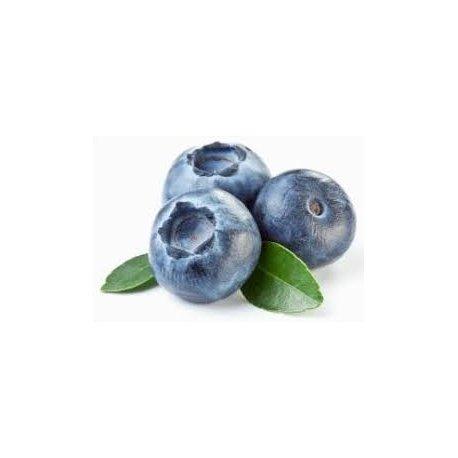 Blaubeersamenöl
