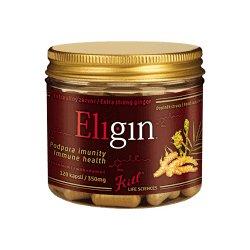KITL Eligin Bio zázvorový zázrak