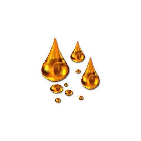BIO-Sonnenblumenöl