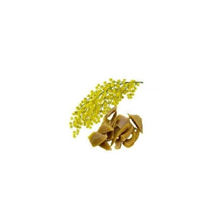 Květový vosk mimóza