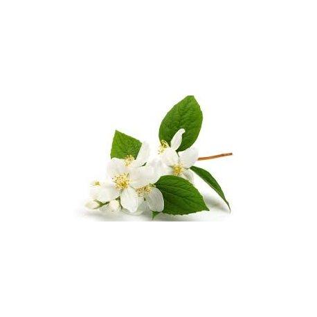 Jasminblütenwasser