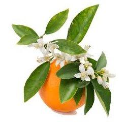 Květová voda Sladký pomeranč