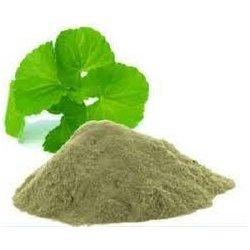 Brahmi pulver (bacopa monnieri)