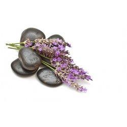 Levandulové dřevo, Lavender Woods
