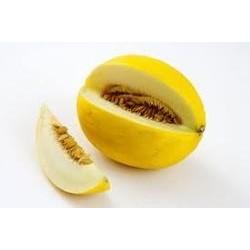Mimosa und gelbe Melone