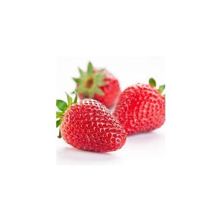 Öl aus Erdbeeresamen (Erdbeereöl)