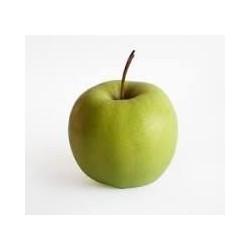 Olej z jablečných semínek