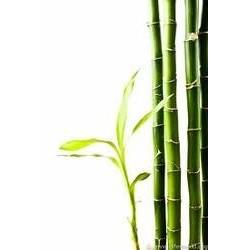 Feines Bambus-Gesichtspuder
