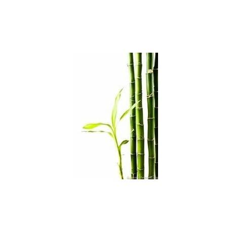 Bambusový jemný prášek na obličej, bambusový prášek
